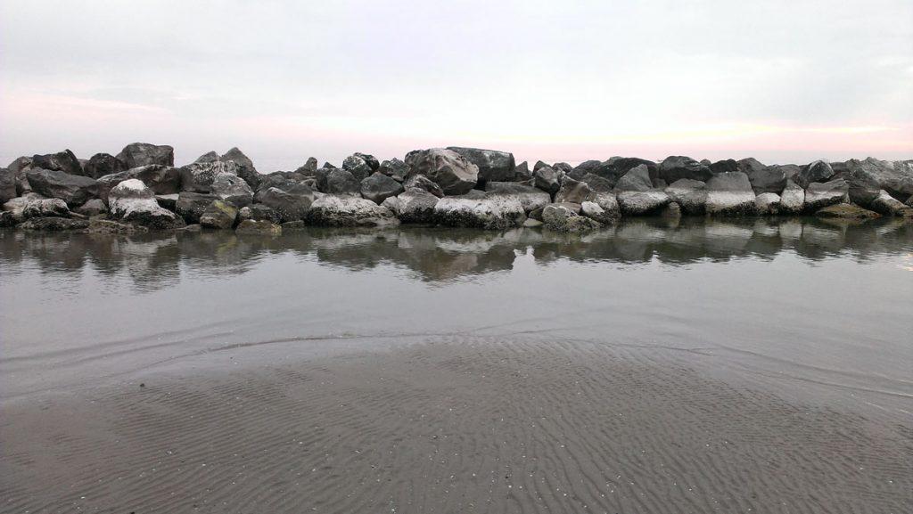 Bassamarea Adriatica
